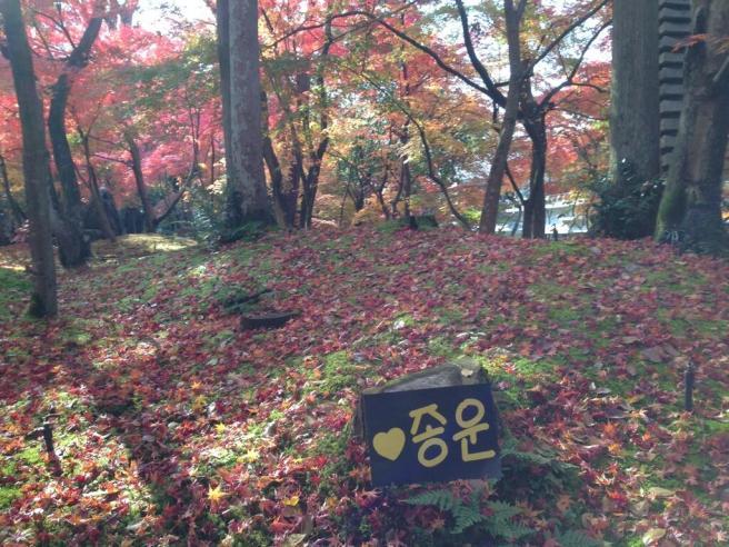@makobekko - Kyoto2