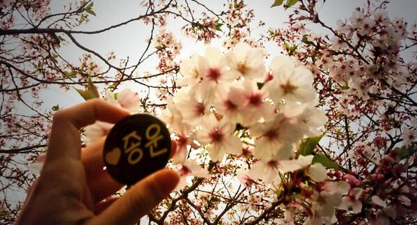 @tvxq0206U-Japan