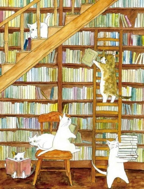 A library of cats (autor desconocido)